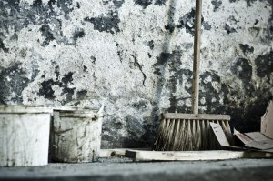 Prevent Mold Growth in your basement