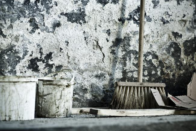 15 basement mold prevention tips cleanfirst restoration - How to deal with mold ...