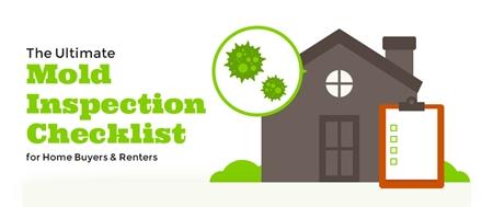 Mold Inspection Checklist   CleanFirst Restoration