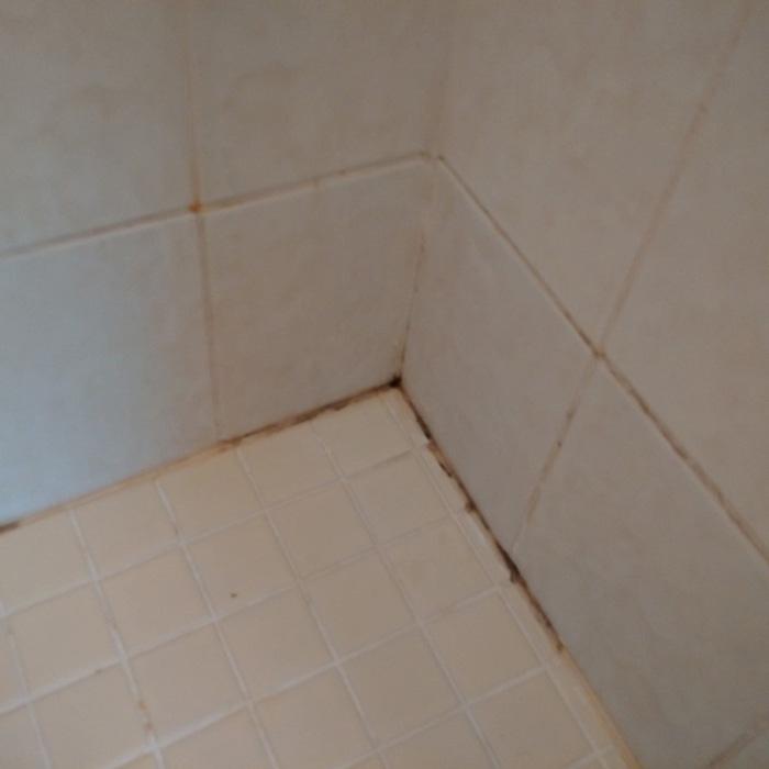 Mold Shower