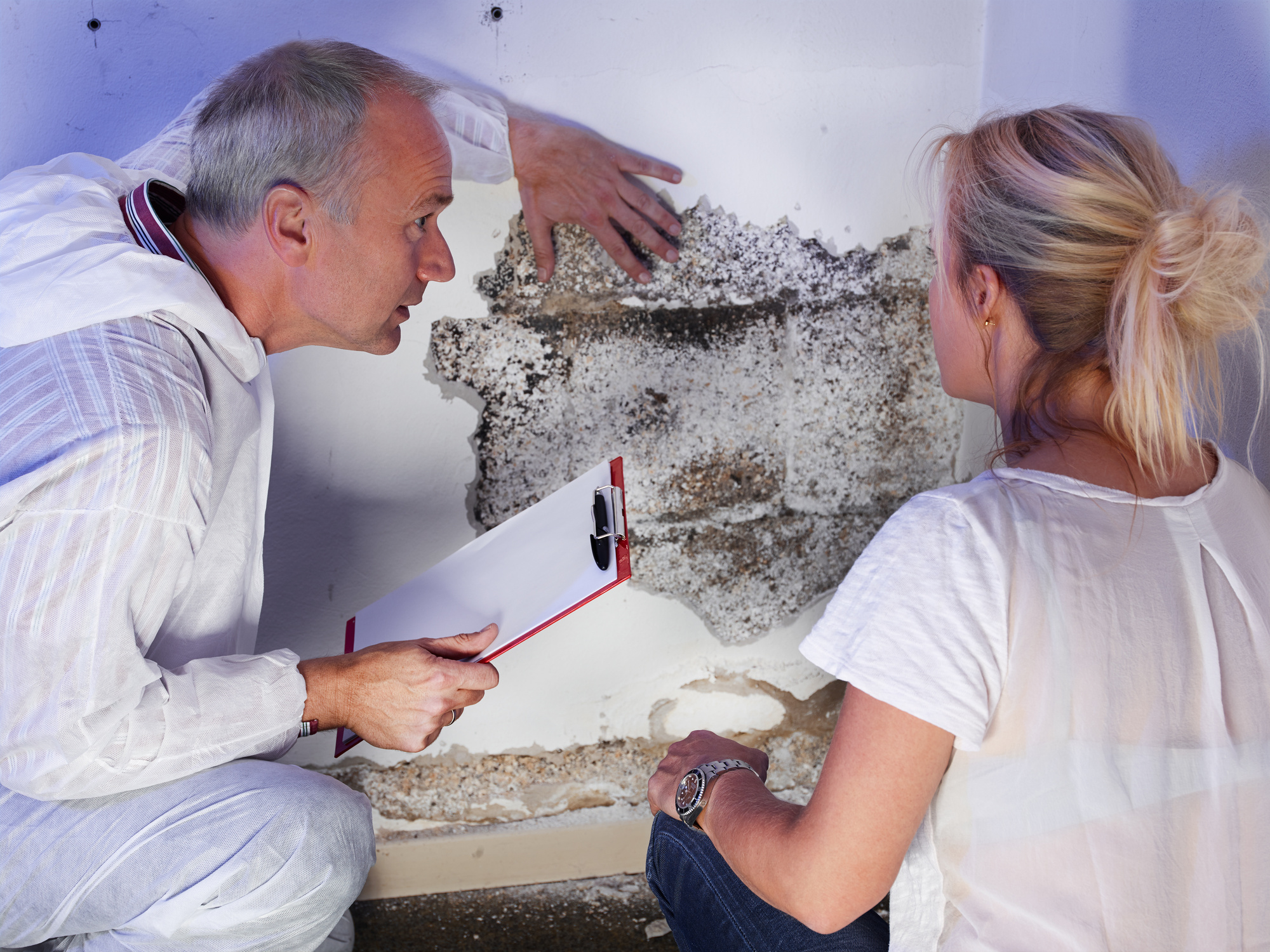 how to tell if you have mold